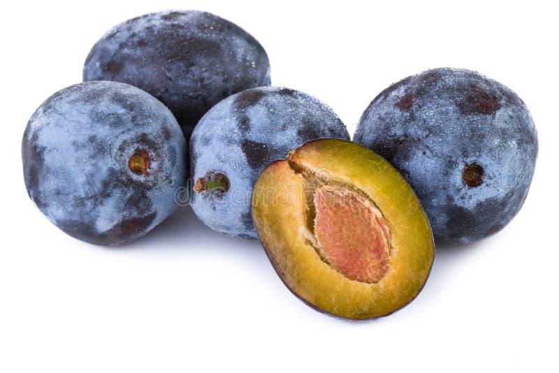 Ciruelos maduros Frutas orgánicas imagen de archivo