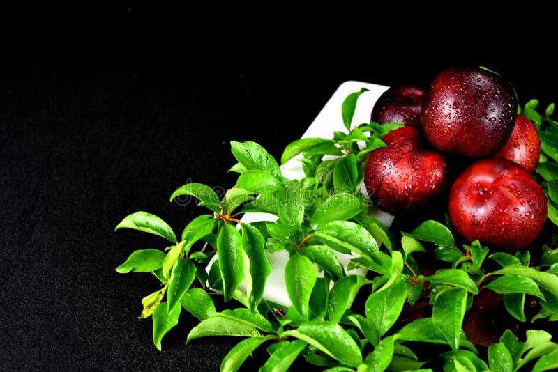 5 ciruelos rojos apilados con las hojas del ciruelo foto de archivo