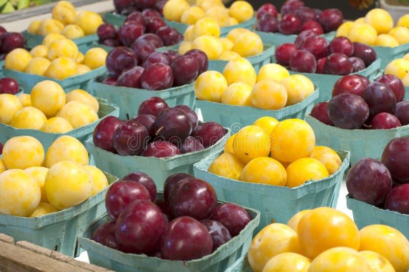 Ciruelos rojos y amarillos dispuestos y exhibidos en cesta en un mercado de los granjeros para la venta. fotos de archivo