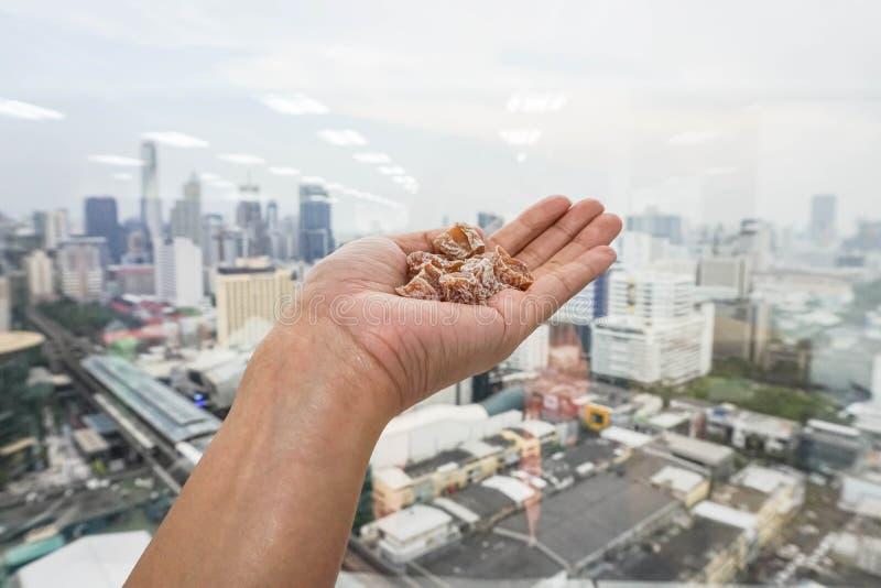Ciruelos secados en mano izquierda de la mujer fotos de archivo libres de regalías