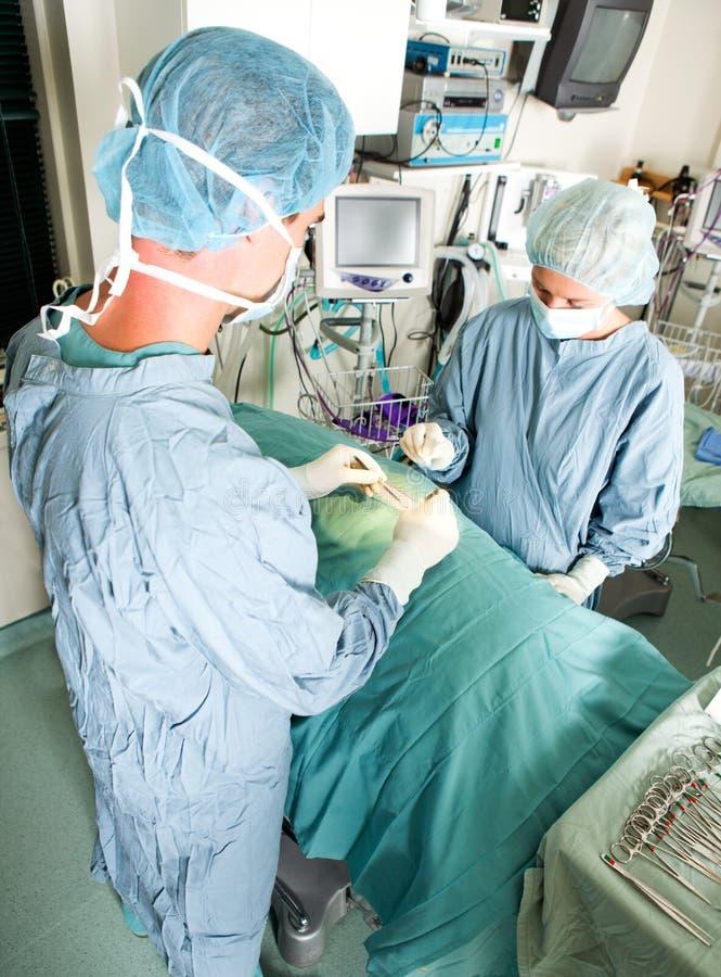 Cirugía viva imagen de archivo libre de regalías