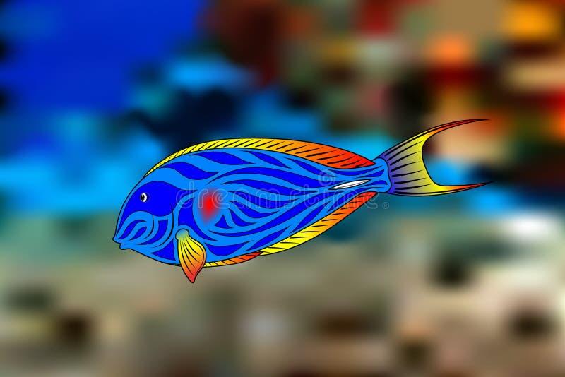 Cirujano de los pescados ilustración del vector