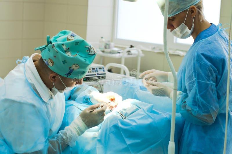 Cirujano plástico en el trabajo fotos de archivo