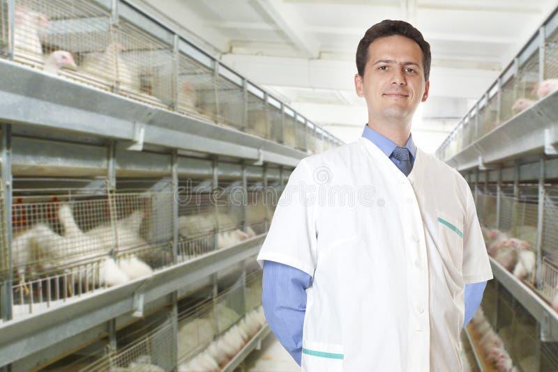 Cirujano veterinario imagen de archivo libre de regalías
