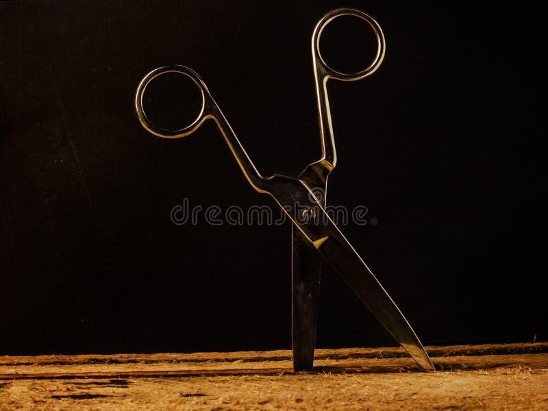 Ciseaux en acier de cru coincés dans la table image stock