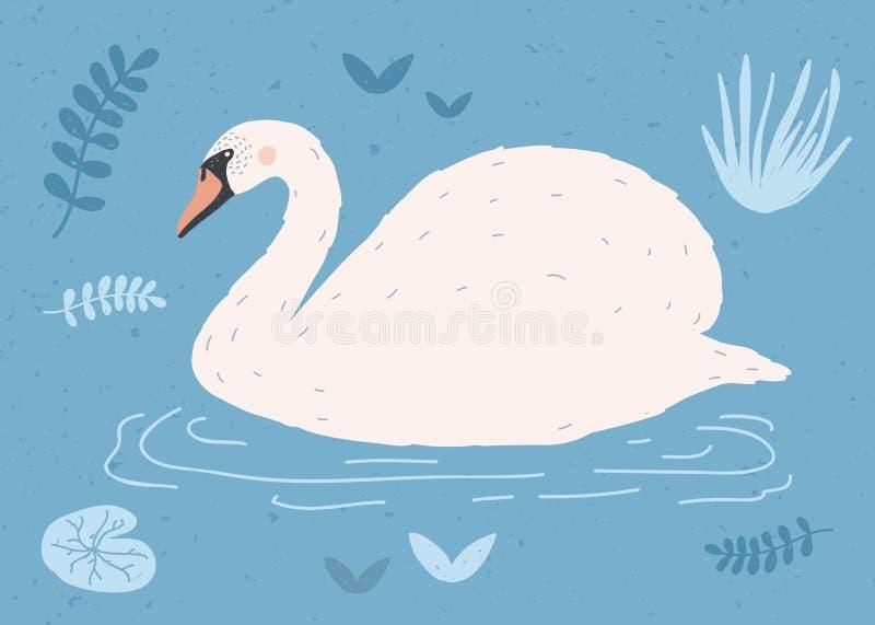 Cisne blanco hermoso que nada en el agua de la charca o del lago entre las plantas Pájaro de la historieta elegante linda, aves d stock de ilustración