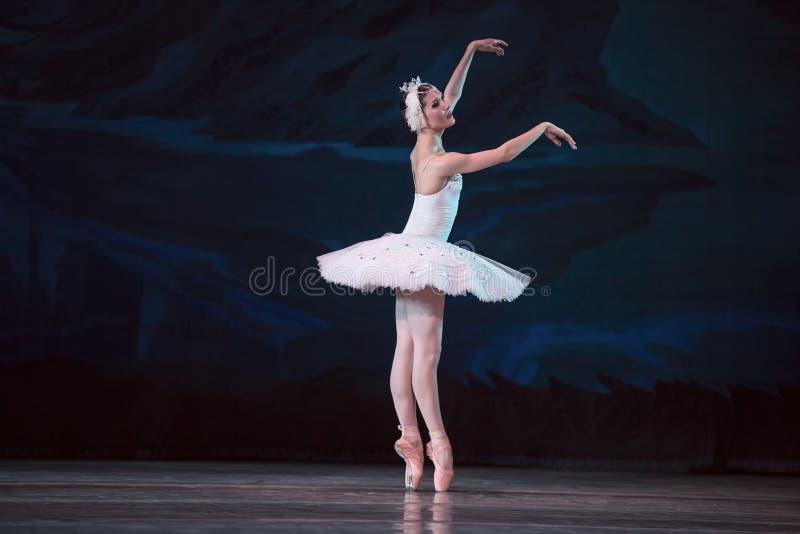 Cisne do branco da bailarina de Prima foto de stock
