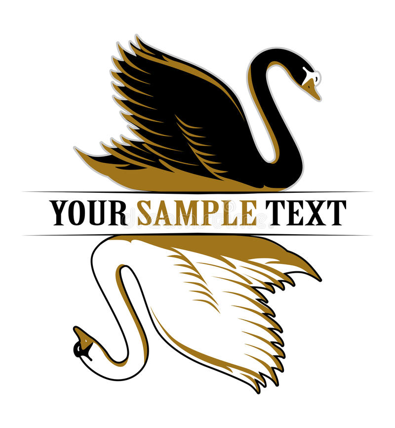 Cisne doble libre illustration