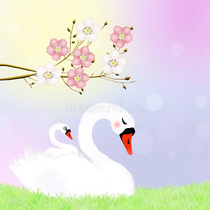 Cisne en la jerarquía libre illustration