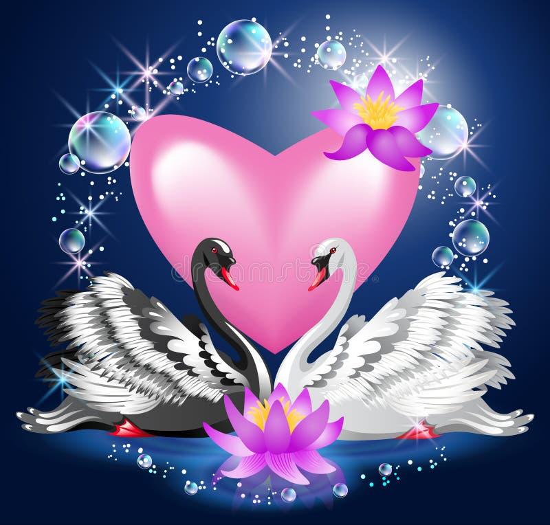 Cisnes e coração preto e branco ilustração do vetor