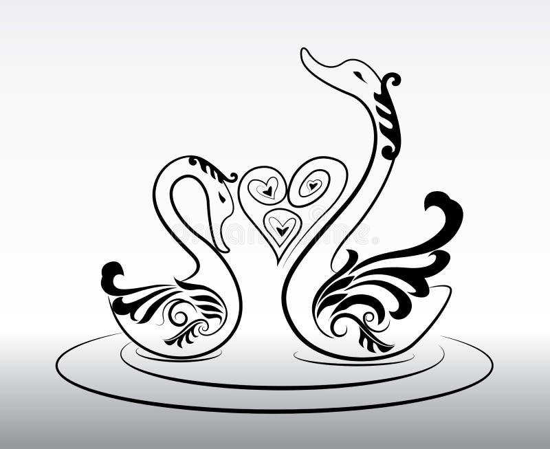 2 cisnes en vector del amor en eps10 libre illustration