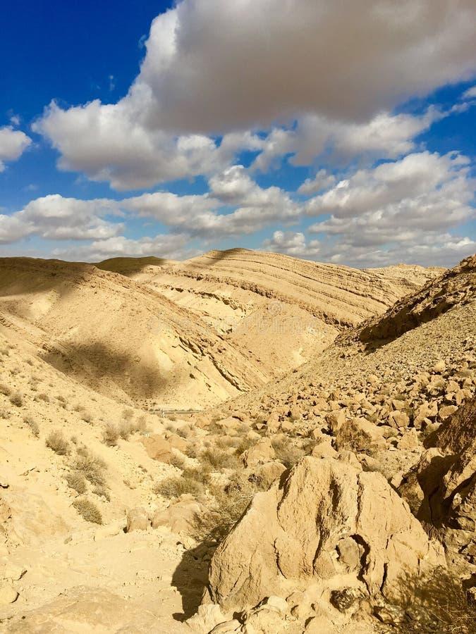 Cisza pustynia obraz royalty free