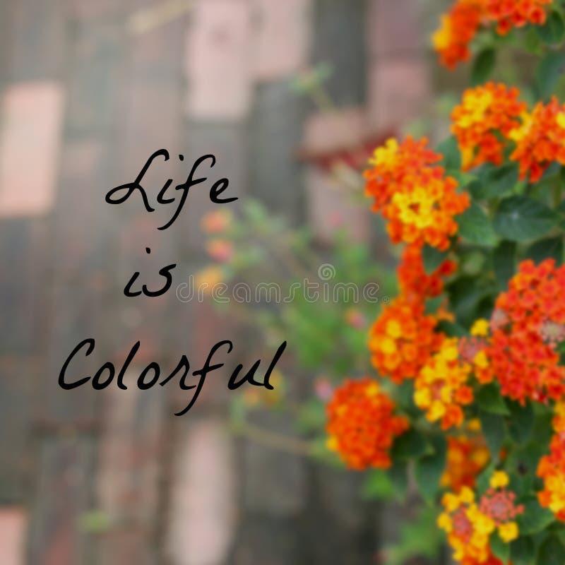Cita tipográfica inspirada - la vida es colorida fotos de archivo