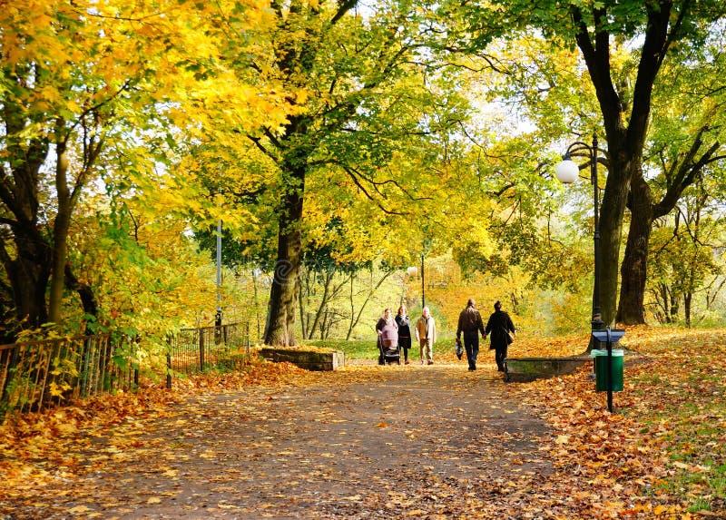 Citadel Park in Pozna stock images