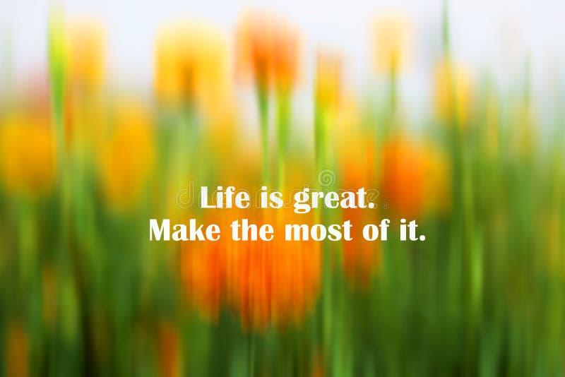 Citation de motivation inspirée - la vie est grande Faites la plupart Avec le fond abstrait des fleurs troubles fraîches de souci images libres de droits