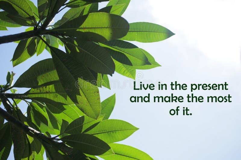 Citation motivante inspirante-Vivez dans le présent et profitez-en au maximum Avec cadre en feuilles vertes et vue en haut du cie photographie stock libre de droits
