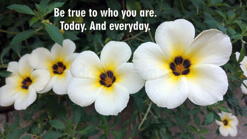Citation motivante - Soyez fidèle à qui vous êtes Aujourd'hui Et tous les jours Avec un fond de fleurs blanches photographie stock