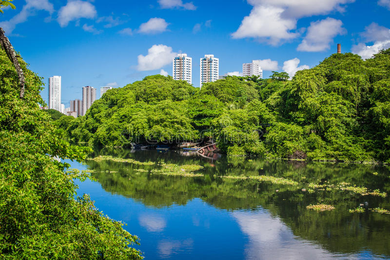 Cities of Brasil - Recife. Park and pier Jaqueira the Capibaribe River in Recife, the state capital of Pernambuco, in northeastern Brazil royalty free stock image