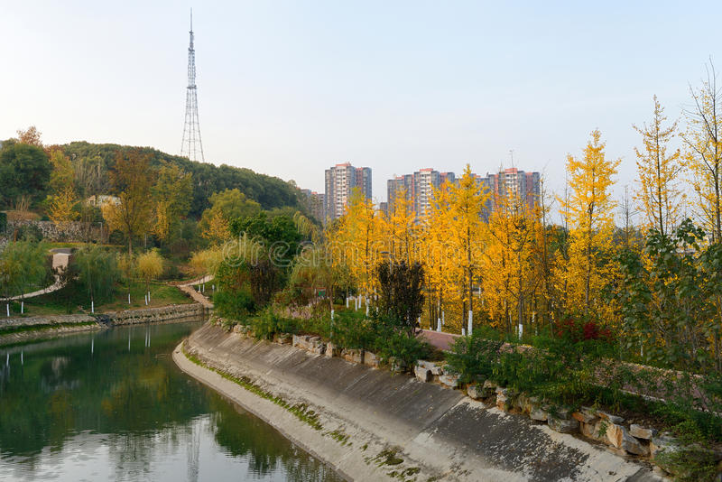 Cities in China. China Hubei city of Yichang Province, Chinese town is to develop green, this is 2013 in urban park stock image
