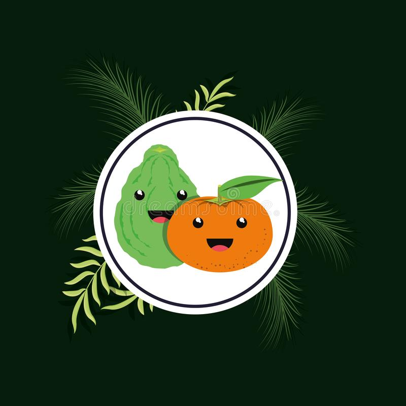 Citric fruits design. Citric fruit design with decorative frame with kawaii tangerine and lemon over green background, colorful design. vector illustration vector illustration