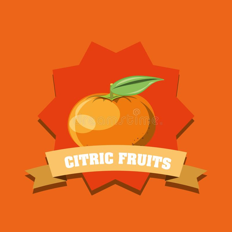 Citric fruits design. With decorative frame and ribbon with tangerine over orange background, colorful design. vector illustration stock illustration