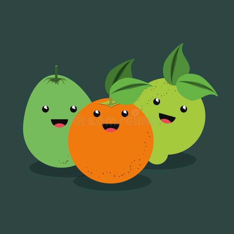 Citric fruits design royalty free illustration