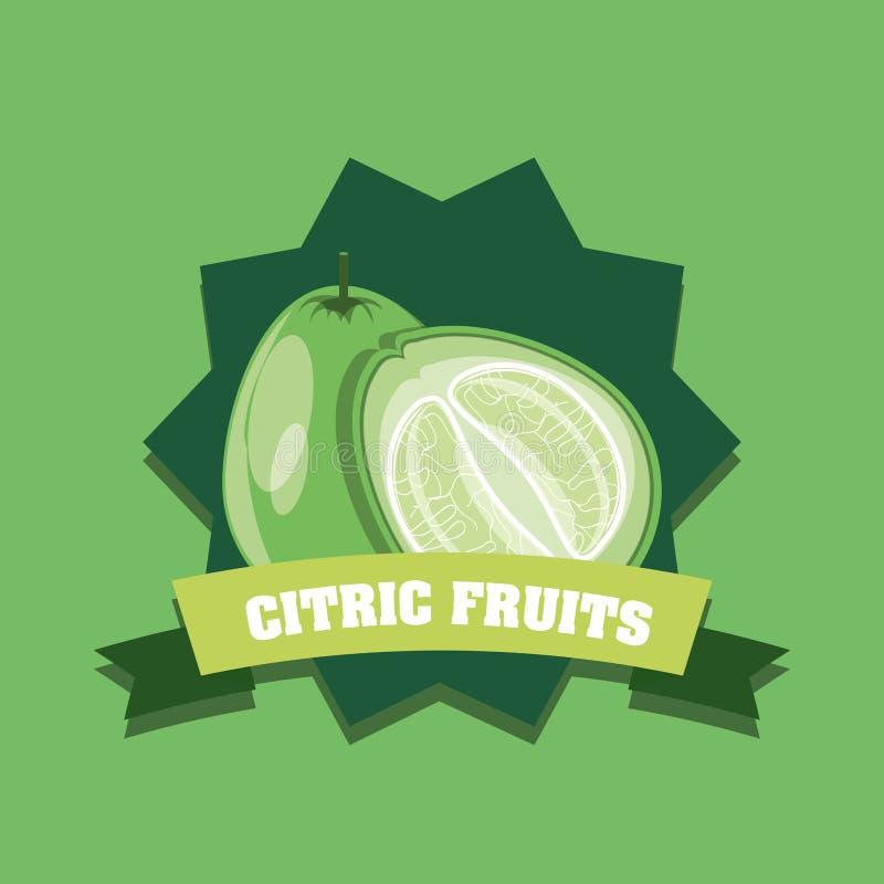 Citric fruits design vector illustration