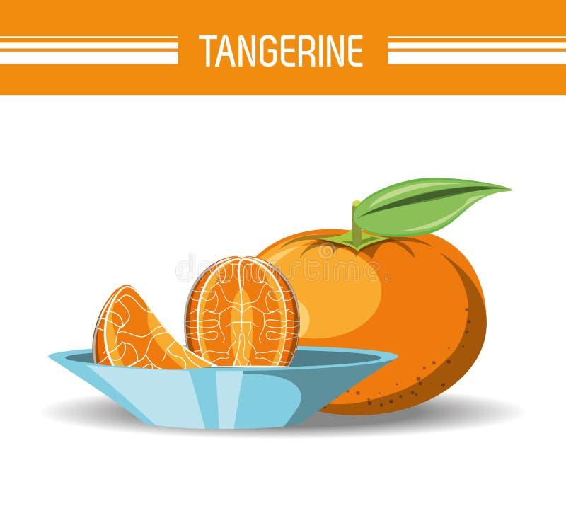Citric fruits design. Tangerine fruit icon over white background colorful design vector illustration stock illustration