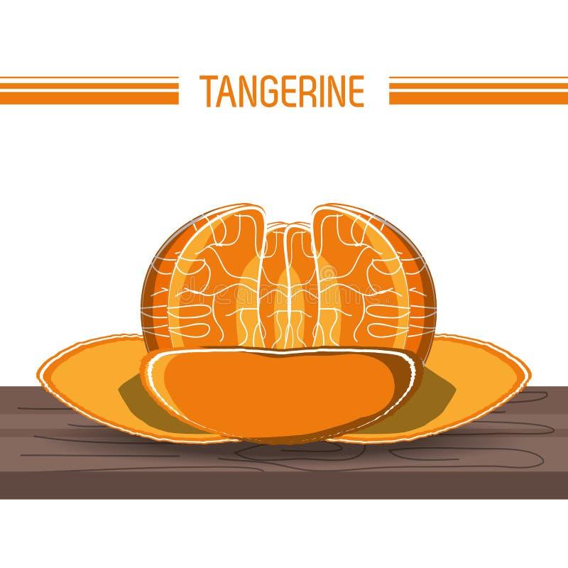 Citric fruits design. Tangerine fruit icon over white background vector illustration stock illustration