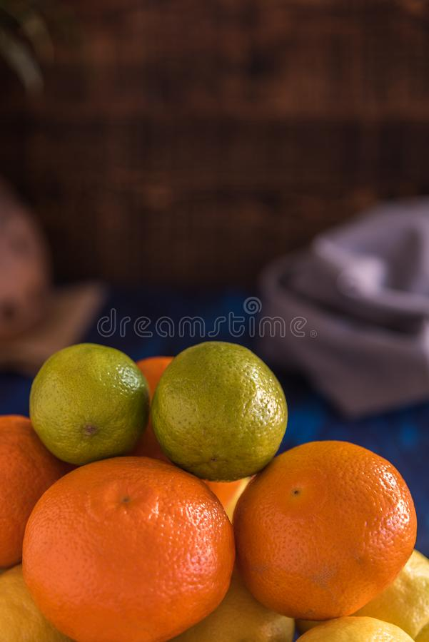 Citric fruits stock photography