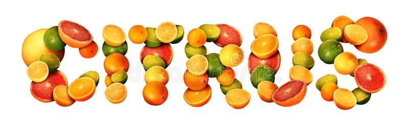 citrino ilustração stock