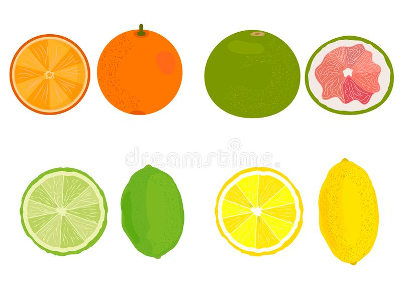 citrino Limão, laranja, toranja, cal Vetor ilustração stock