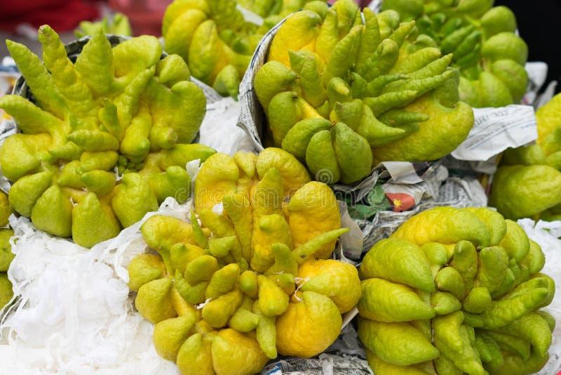 Citrinos digitate cors de limão do dedo da Buda na adoração oriental fotos de stock