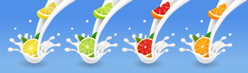 Citrinos no grupo do fluxo do leite cal, toranja, limão, alaranjado no respingo do iogurte Vetor realístico ilustração do vetor
