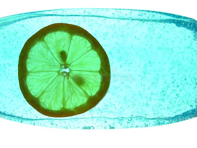 Citroen in een fles stock fotografie