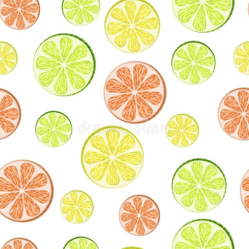 Citroen, kalk, grapefruit stock illustratie