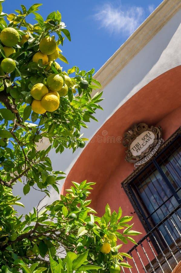 Citroenen en voorgevel van een gebouw in Sevilla stock foto's