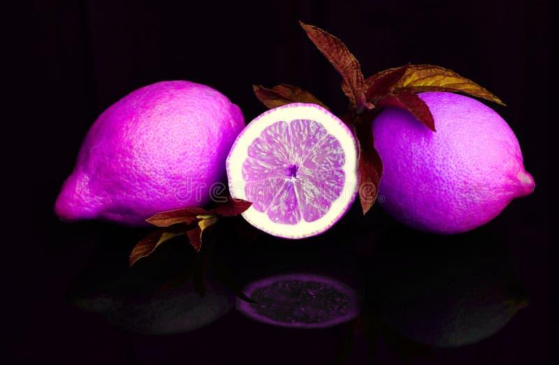 Citroenen in purple en roze royalty-vrije stock foto