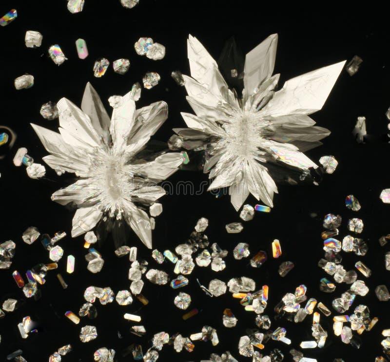 Citroenzuurkristallen op zwarte stock foto