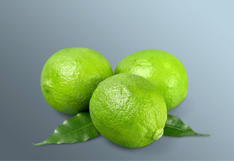 Citron arkivfoto