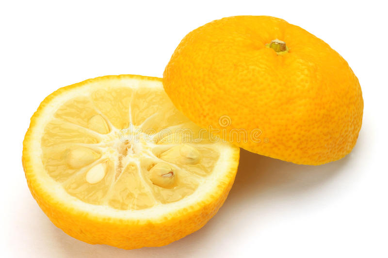 Citron. I photographed citron in a white background royalty free stock photography