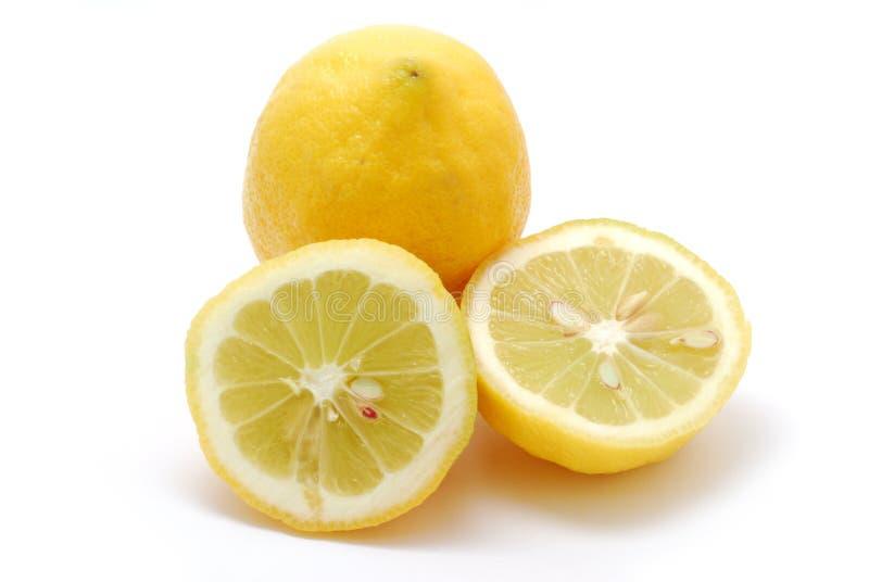 Citron. Slices of citron on white background stock photography