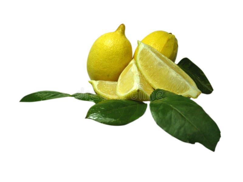 Download Citron photo stock. Image du tart, plaque, orange, acide - 72342