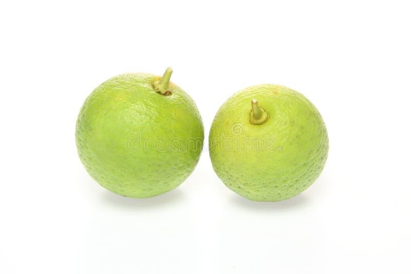 citron foto de stock