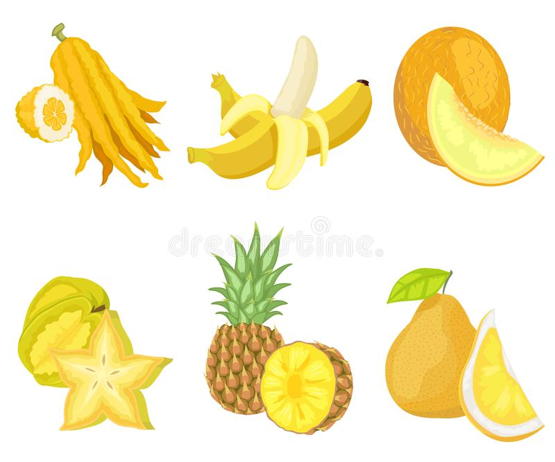 Citron and Banana, Melon and Carambola Fruits Set. Exotic lush fruits of yellow color vector, set of isolated banana and citron, melon and pineapple with foliage royalty free illustration