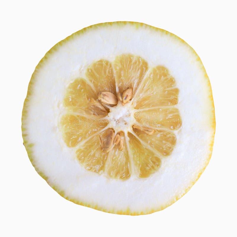 Citron citrus fruit. Citron (Citrus Medica) citrus fruit vegetarian food sliced isolated over white stock images