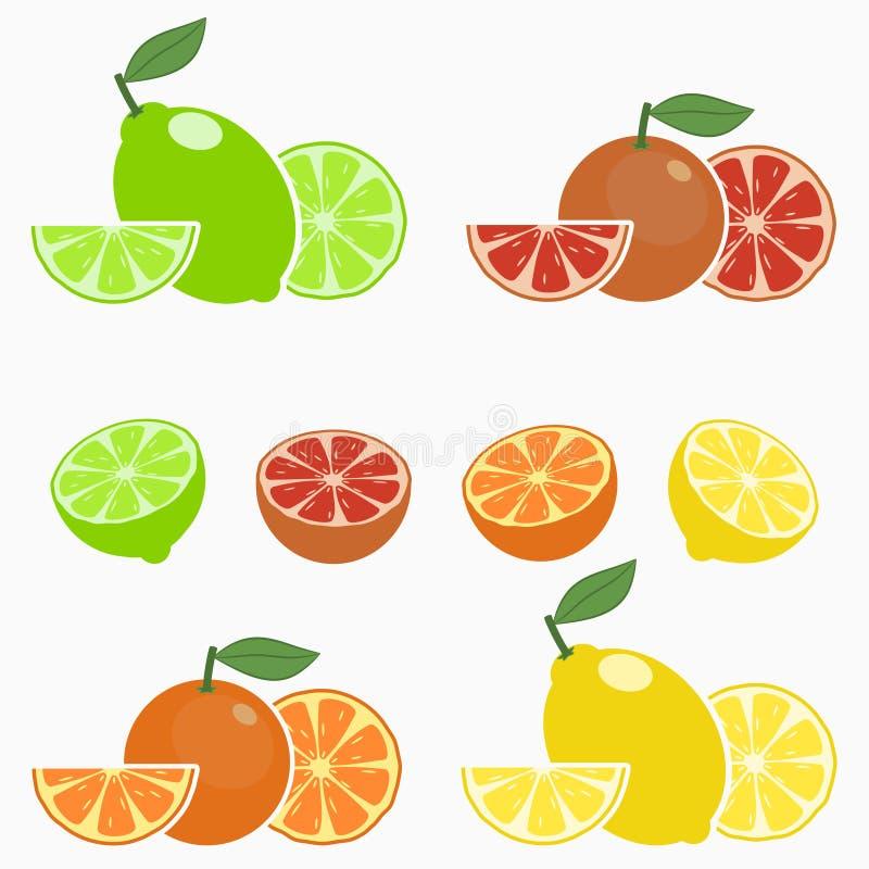 citron E r Vecteur illustration libre de droits