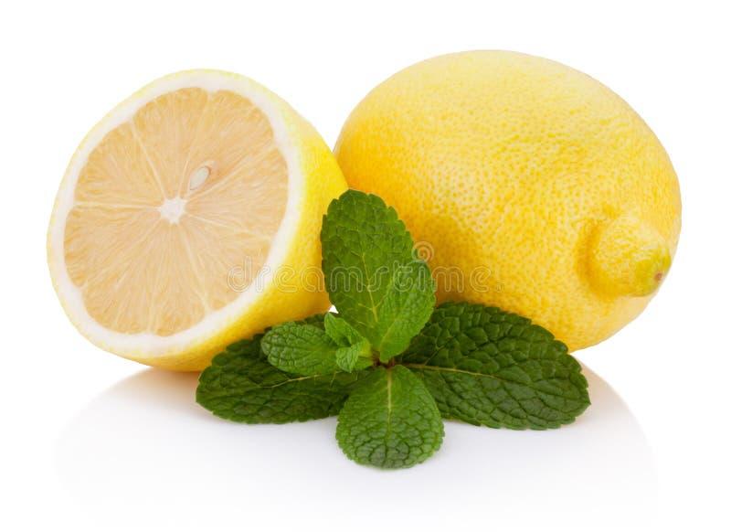 Citron för ny frukt med bladgräsplanmintkaramellen som isoleras på vit bakgrund arkivbild