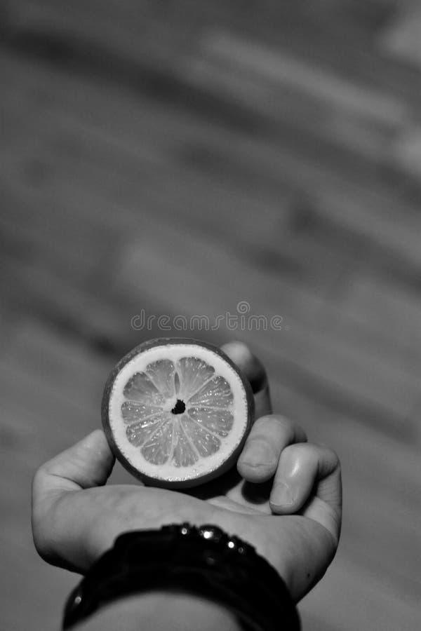 Citron frais à disposition images libres de droits