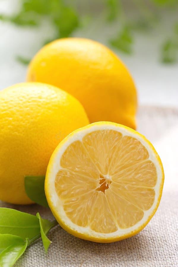 Citron frais photographie stock libre de droits